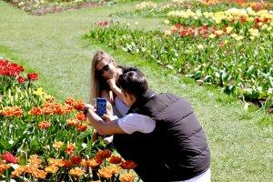 Tulpių ekspozicijoje